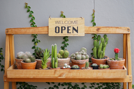 A business sign 'Open and Welcome' hanging on cactus pots shelve at restaurant entrance. Industry food, Cafe and restaurant idea concept. Imagens