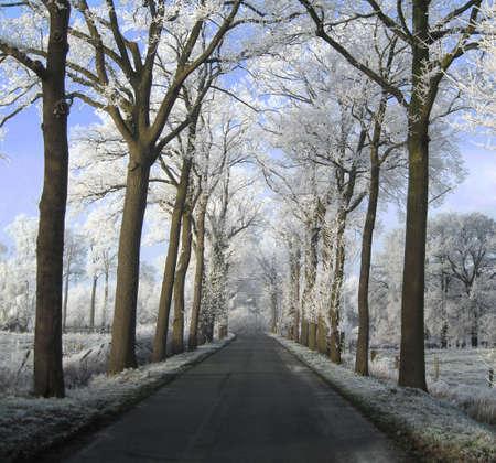 D'hiver en Belgique Banque d'images - 4610019