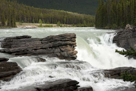 unstoppable: Thundering water over brown-grey rocks against green forest backdrop.