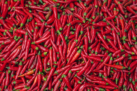 Pigment red hot jalapeno chili peppers on display at Sunday market. Very red scene with green dots.
