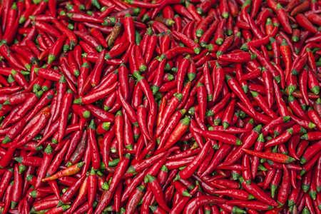 Pigment red hot jalapeno pepers te zien op zondag markt. Zeer rood scène met groene stippen.