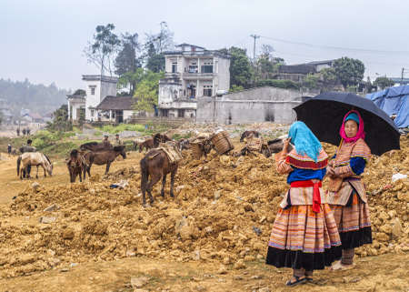 Vietnam Bac Ha - March 2012: Hmong Horse market and parking on Sundays. Editorial