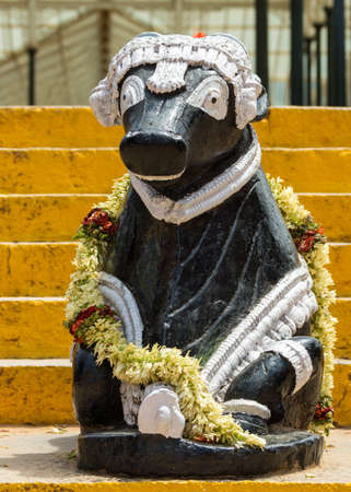 nandi: Black bull statue, decorated with flower garland and white trim, sits on the stairs leading to the glass house in Bangalore park