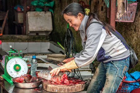 fish vendor: SA PA, VIETNAM - CIRCA MARCH 2012  Female fish vendor cutting fish in bloody pieces on market  Smiling woman with knife and balance