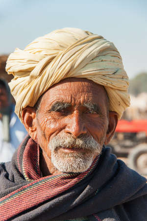 closeup cow face: NAGAUR, INDIA - FEBRUARY 10, 2011: An old cattle farmer with yellow turban and navy-blue blanket around his shoulders looks into the camera. He Editorial