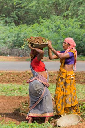 siervo: Chettinad, India - 18 de octubre de 2013: En Soorakudi Hamlet un grupo de mujeres empleadas en el esquema Nrega limpiar el lado de la carretera. Una mujer se pone un recipiente con tierra en la parte superior de la cabeza de la otra mujer.