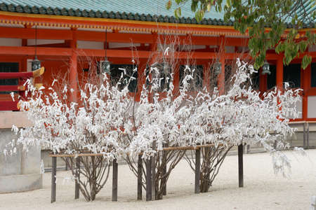 Kyoto, Japan - September 15, 2016: Collection of dead tree branches with white paper prayer strips at Heian Shrine. People print or write their pleas and wishes on paper and leave it at the shrine. Editorial