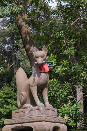 Messenger: Kyoto, Japan - September 17, 2016: Fushimi Inari Taisha Shinto Shrine. Kitsune, the brown fox, messenger and server of God Inari, holds the key to good luck in its mouth and sports a red apron. Against green tree foliage.