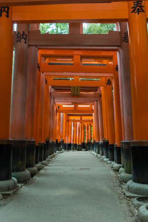 Kyoto, Japan - September 17, 2016: Thousands of Torii create path up the hill at Fushimi Inari Taisha Shinto Shrine. Look through multiple of these vermilion Torii.