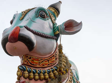 Madurai, India - October 22, 2013: In front of the Meenakshi temple in town stands this giant colorful statue of Nandi, the bull. Close up of his head and neck only. Garlands of bells. Editorial