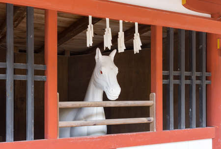 shinto: Hiroshima, Japan - September 20, 2016: All white stone statue of horse at itsukushima Shinto Shrine. Set in vermilion stable. Red-eyed Horse looks outside.
