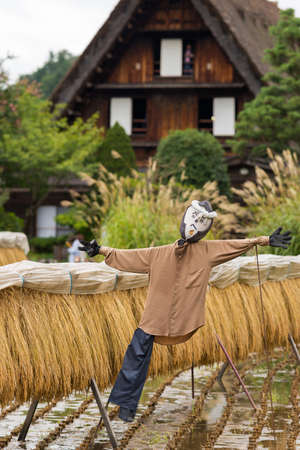 joined hands: Shirakawago, Japan - September 23, 2016: Closeup of well designed and decorated scarecrow with drying rice stalks at Shirakawago. House with particular joined hands roof in the back. Editorial