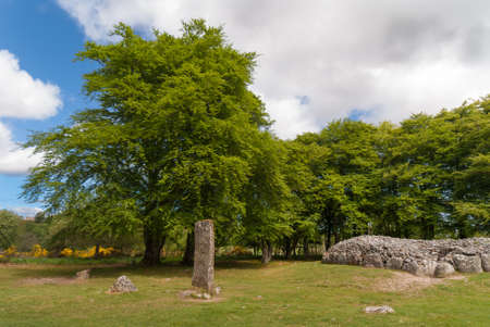 grave site: Inverness, Scotland - June 2, 2012: Wide shot of the menhir stone circle and grave site heap of gray stones at prehistoric Clava Cairns. Surrounded by green trees, grassy field and white clouds in blue sky.