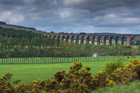 redstone: Inverness, Scotland - June 2, 2012: The long Culloden train viaduct is collection of red-stone bows and runs over the green valley under cloudy sky. Scotch broom hedge up front.