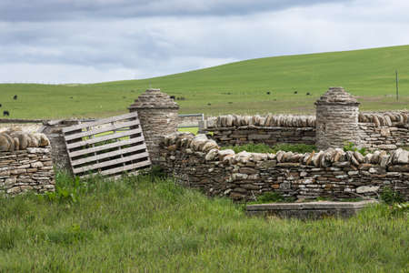Orkneys, Scotland - June 5, 2012: The wider area around Skara Brae Neolithic settlement shows green meadows and gray-brown stone walls. Light blue sky and black sheep on the grass.