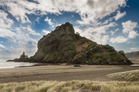 forefront: Auckland, New Zealand - March 2, 2017: Lion rock on sandy Piha beach of Tasman Sea fills full frame under blue sky with white clouds. Dunes in forefront.