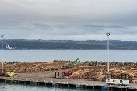Napier, New Zealand - March 9, 2017: Overview of part of large timber harbor under cloudy sky. Heaps of brown tree trunks sawed at fixed length. Pacific Ocean in back. Cranes and bulldozers.