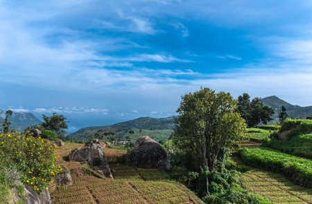 Nilgiri Hills, India - October 26, 2013: Near Thalaikunha hamlet, small farms and green and brown vegetable plots under blue sky. Highland scenery with mountains, dark green forests, colorful houses