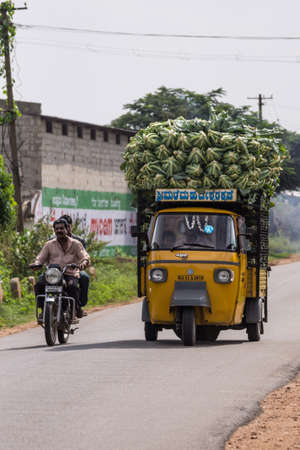 Mysore, India - October 27, 2013: In Ranganathapur, on rural road rides a yellow three-wheeled APE truck overloaded with heap of harvested cauliflowers. Driver and kid visible. Motorbike overtakes.
