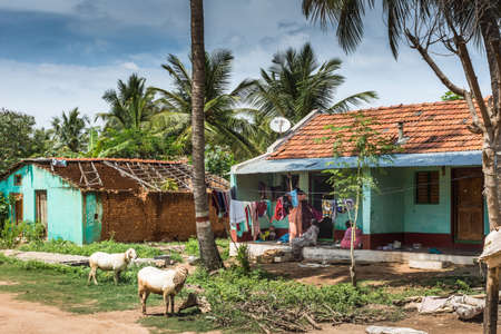 Mysore, India - October 27, 2013: Small red-tiled farm with women, animals, trash and laundry up front under blue sky with white clouds and plenty of green vegetation.