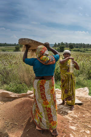 Mysore, India - October 27, 2013: Two colorfully dressed farm women sift brown buckwheat grain on open green field under blue sky with white clouds in Mellahalli hamlet. Editorial