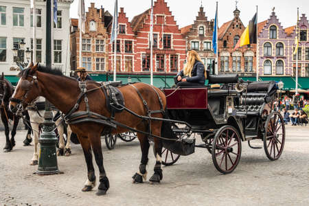Bruges, Flanders, Belgium - June 15, 2019: Closeup of Brown horse and black carriage with NW side of Market square as backdrop. Publikacyjne