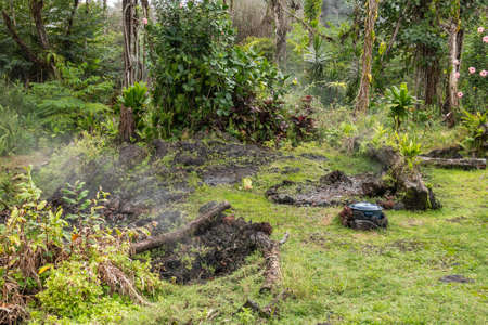 Leilani Estate, Hawaii, USA. - January 14, 2020: Devastation in parts untouched by 2018 lava. Poisonous gases and vapors escape ground of abandoned house. Green grass and brown trees. Stock Photo