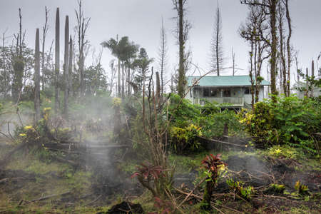 Leilani Estate, Hawaii, USA. - January 14, 2020: Devastation in parts untouched by 2018 lava. Poisonous gases and vapors escape ground of forest and abandoned house. Green plants and dead trees.