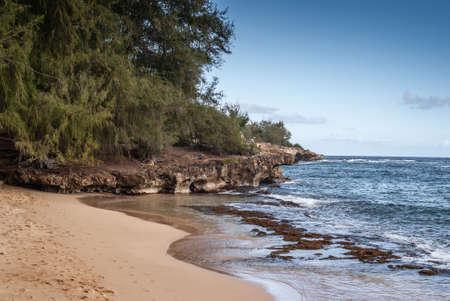 Kauai, Hawaii, USA. - January 11, 2012: Beige brown sand leads to brown rocky cliffs grown on top by green trees under blue sky, bordering blue ocean water. Hidden fisherman.