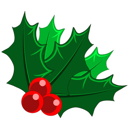 christams: Christams Holly Mistletoe with berries Illustration