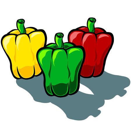 capsicum: Cute vector cartoon capsicum Bell Pepper in green, red and yellow
