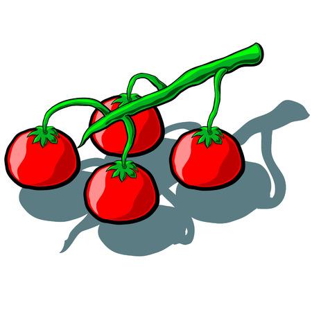 truss: Cute cartoon Tomato Truss Illustration
