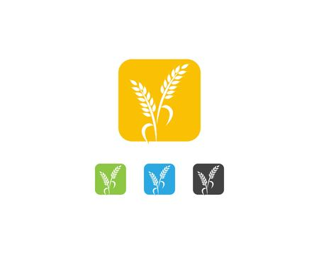 Wheat rice logo design template Çizim