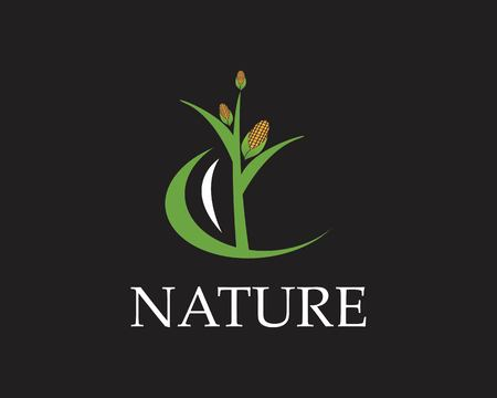 Corn nature industry logo vector illustration