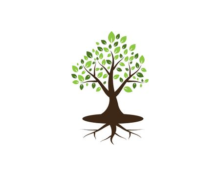 Tree icon concept of a stylized vector illustration Illustration