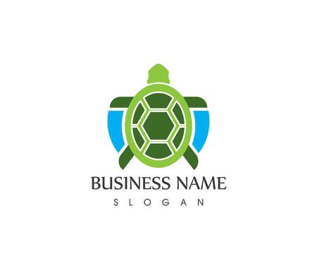 turtle animal cartoon icon image vector illustration design Illustration