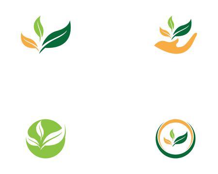 Nature leaf icon vector illustration