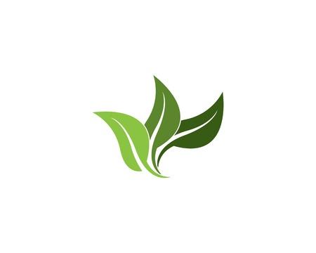 Nature leaf logo vector