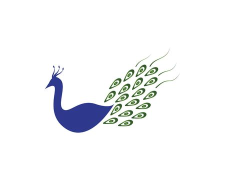 Peacock icon and symbol vector illustration