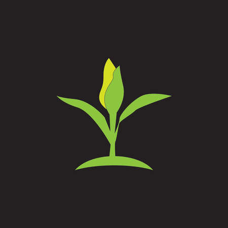 Nature leaf icon and symbol vector illustration