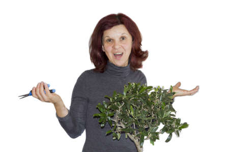 Florist lady just finished trimming olive tree bonsai photo