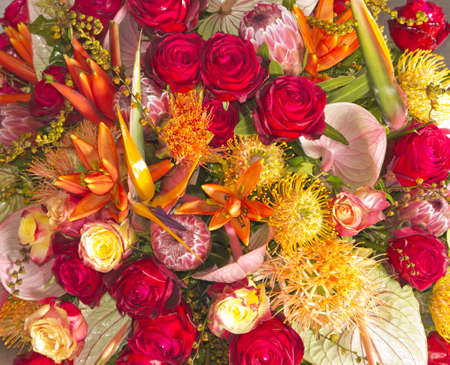 flores exoticas: Hermoso arreglo floral - arco iris de flores ex�ticas de colores