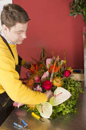 Male Florist in flower shop arranging and presenting his plants on display
