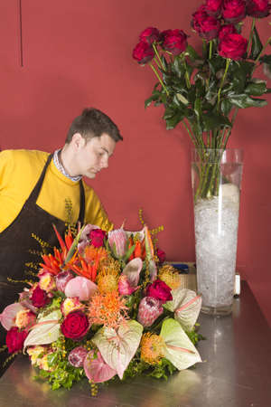 Male Florist in flower shop arranging and presenting his plants on display photo