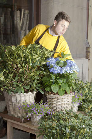 Male Florist in flower market  arranging and presenting his plants on display photo