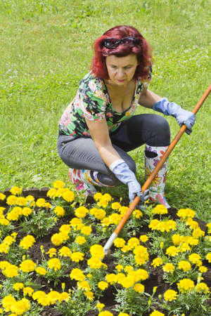 Lady doing some gardening in colorful garden photo