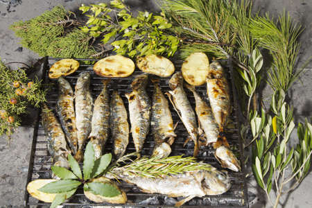 Fresh Mediterranean fishes with potatoes, rosemary and Mediterranean herbs, on traditional charcoal BBQ Stock Photo