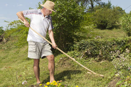 Mid age man with straw hat raking the garden on sunny summer afternoon photo