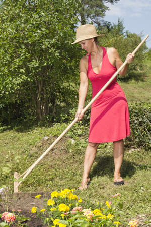 mid afternoon: Mid age woman with straw hat raking the garden on sunny summer afternoon Stock Photo