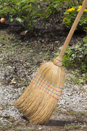 brooming: Traditional  sorghum broom whilst brooming in the garden path-closeup